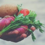 INSIGHTS FROM A CHRISTIAN VEGETARIAN